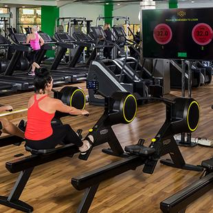TECHNOGYM Skillrow machines