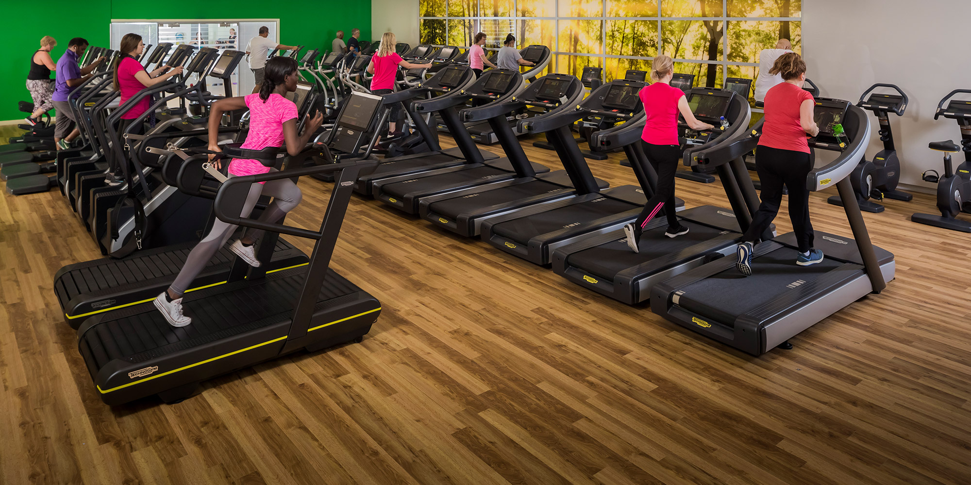 Chingford Fitness & Wellbeing Gym