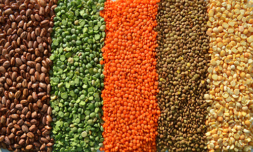 Multicoloured lentils