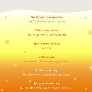 Hydration pee chart