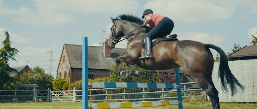 Wendy horse jumping
