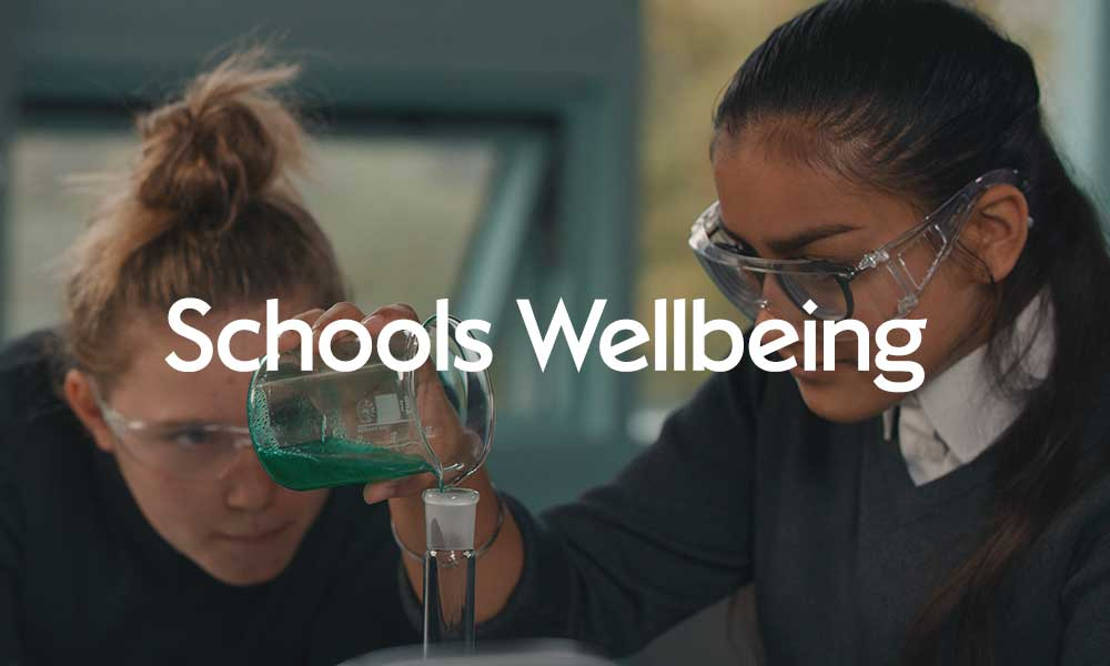 Click here for information on our Scholls project