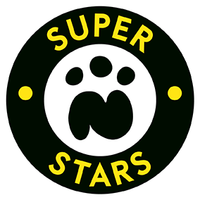 N Stars Superstars